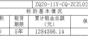鑫华厂区内车间部分区域招租项目挂牌暨电子竞价公告