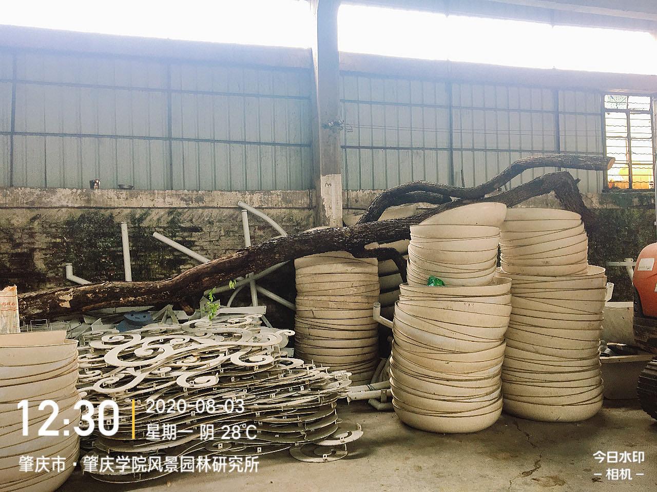 一批海南黄花梨木材转让项目挂牌暨电子竞价公告