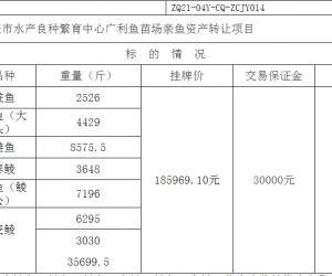 肇庆市水产良种繁育中心广利鱼苗场亲鱼资产转让项目挂牌暨电子竞价公告(终止)