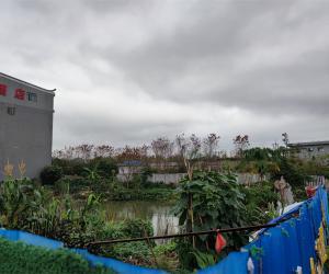 七星大道七星街南侧约3377平方米的土地租赁权拍卖公告
