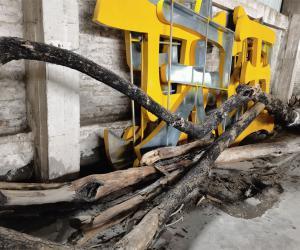 一批降香黄檀木材转让项目挂牌公告暨电子竞价公告